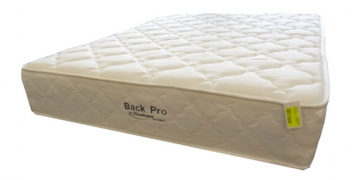 Back Pro Single Mattress Only Firm