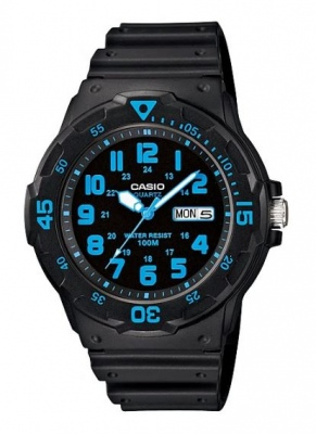 Casio Standard Black Blue Analogue Watch