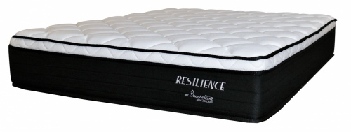 Resilience 2 King Mattress Only