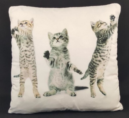 3 Kittens Double Sided Cushion 45X45Cm