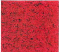 Venus Red 2.0X3.0M Xtra Large Rug Stock