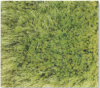 Venus Super Shaggy Large Green 1.5X2.2M Polyester