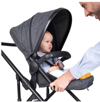 Phil & Teds Voyager Buggy With Charcoal Liner